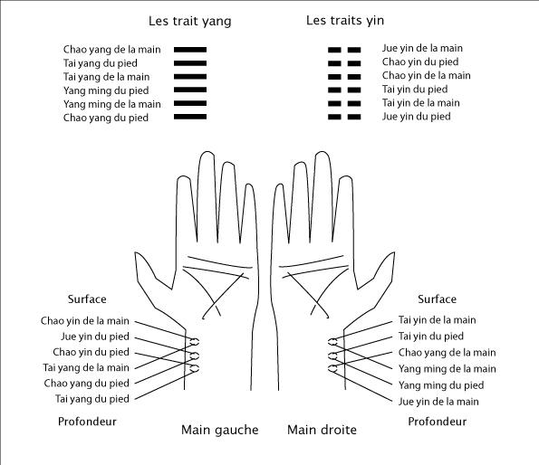Hexagrammes et pouls